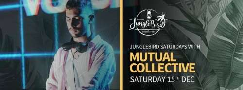 JungleBird Saturdays with Mutual Collective