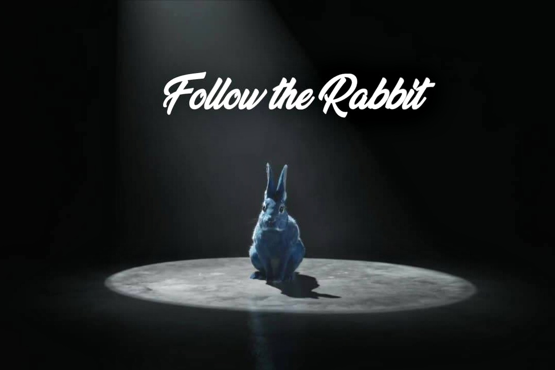 Ohrwurm's Alam to take you on a futuristic Live Stream journey at Follow the Rabbit